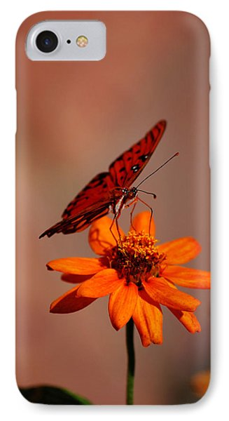 Orange Butterfly Orange Flower IPhone Case by Lori Tambakis