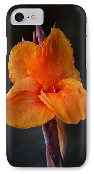 Orange Canna Lily IPhone Case by Melanie Moraga