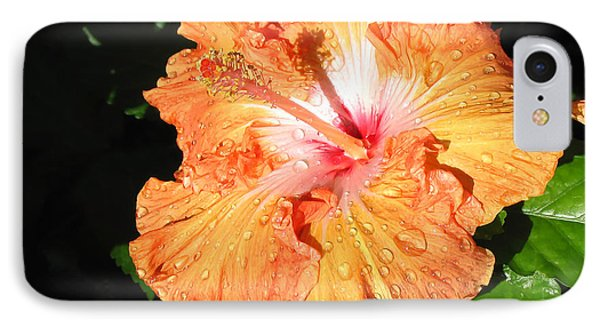 Orange Hibiscus After The Rain 1 IPhone Case by Connie Fox