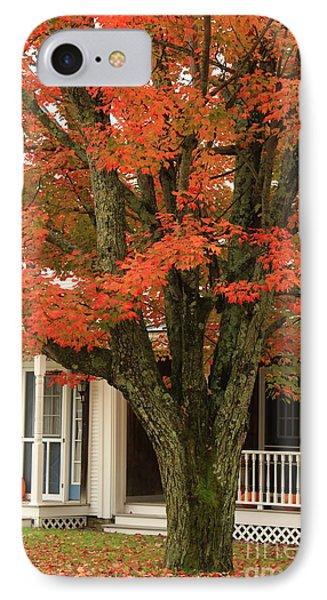 Orange Leaves And Pumpkins Phone Case by Deborah Benoit