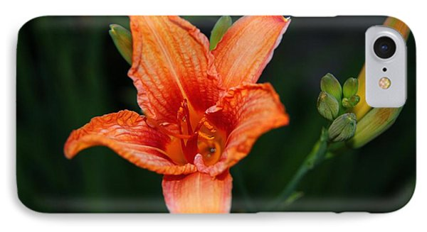 IPhone Case featuring the photograph Orange Lily by Davandra Cribbie