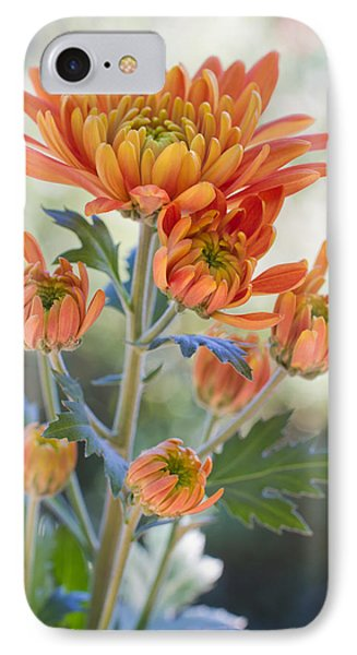 Orange Mums IPhone Case by Heidi Smith