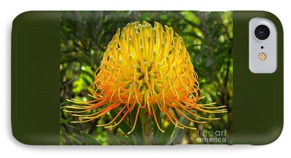 Orange Protea Flower Art Phone Case by Rebecca Margraf