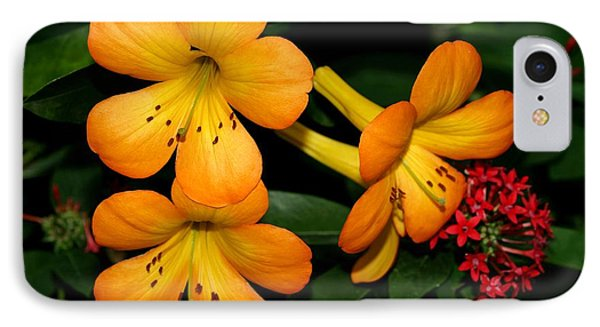 Orange Rhododendron Flowers Phone Case by Sabrina L Ryan
