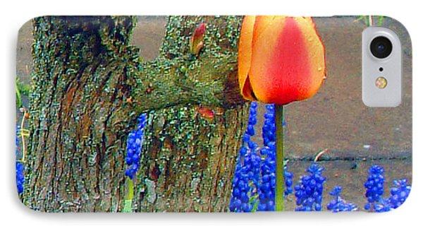Orange Tulip And Bluebells IPhone Case