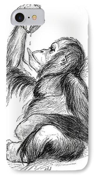Orangutan, 19th Century Phone Case by