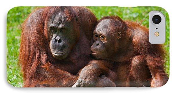 Orangutan Mother And Child Phone Case by Gabriela Insuratelu