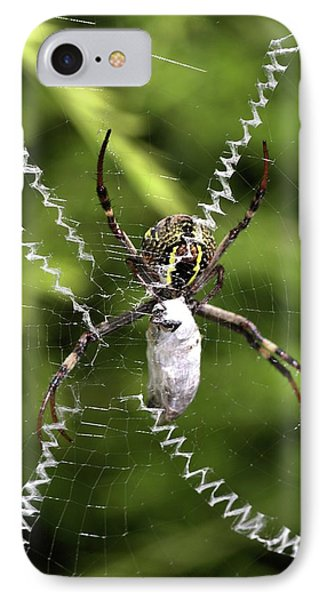 IPhone Case featuring the photograph Orb Weaver by Joy Watson