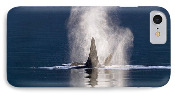 Orca Pair Spouting Southeast Alaska Phone Case by Flip Nicklin