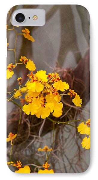 Orchid - Golden Morning  IPhone Case by Mike Savad