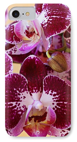 Orchid Blooms Phone Case by Carmen Del Valle