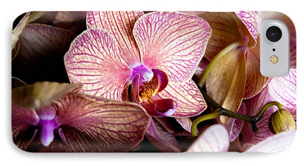 Orchid IIi Phone Case by Christopher Holmes