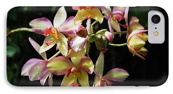 Orchid Macro IPhone Case by Angela Murray