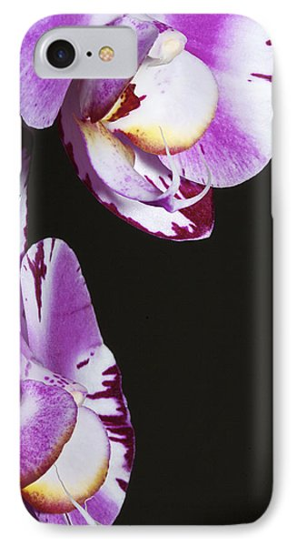 Orchid Stem Phone Case by Phyllis Denton
