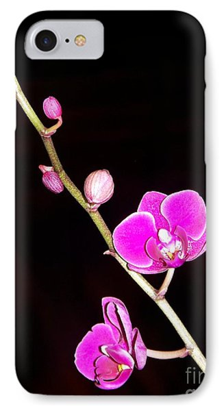 Orchid IPhone Case by Sylvie Leandre