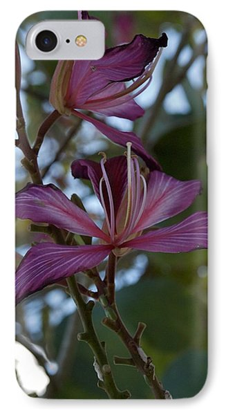 Orchid Tree Phone Case by Joseph Yarbrough