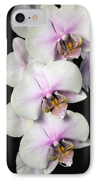 Orchids Phone Case by David Chapman