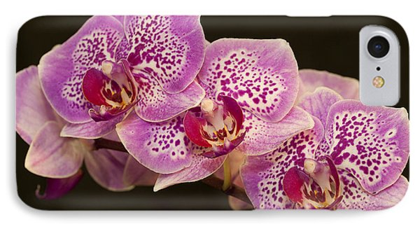 IPhone Case featuring the photograph Orchids by Eunice Gibb