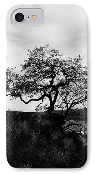 Oregon City Tree IPhone Case
