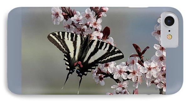 Ornamental Plum Blossoms With Zebra Swallowtail Phone Case by Lara Ellis