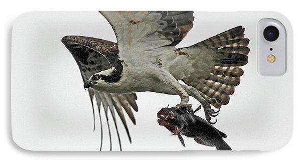 Osprey - Catfish IPhone Case by Larry Nieland