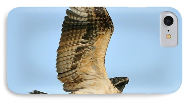 IPhone Case featuring the photograph Osprey After Flight by Rick Frost