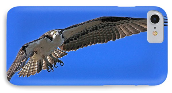 IPhone Case featuring the photograph Osprey Flight by Larry Nieland