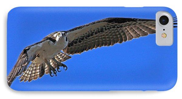 Osprey Flight IPhone Case by Larry Nieland