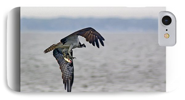 Osprey Grab Phone Case by Brian Wallace