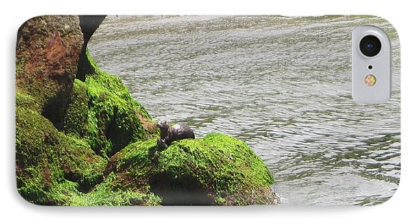IPhone Case featuring the photograph Otter In Bellingham Bay by Karen Molenaar Terrell