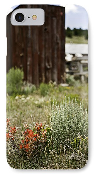 Outhouse Path Phone Case by Melany Sarafis