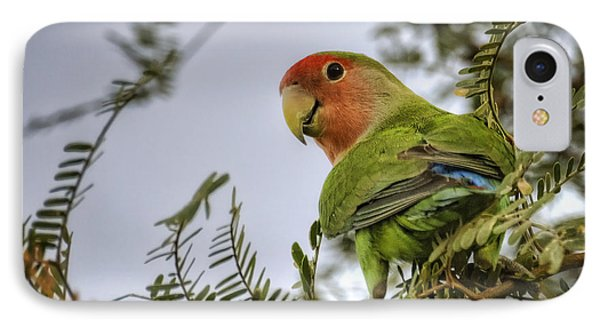 Over My Shoulder  IPhone Case by Saija  Lehtonen