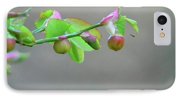 Pacific Huckleberry Phone Case by Pamela Patch