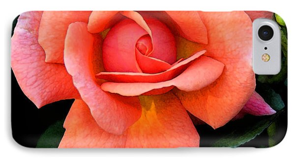 Painted Rose IPhone Case by Cindy Manero