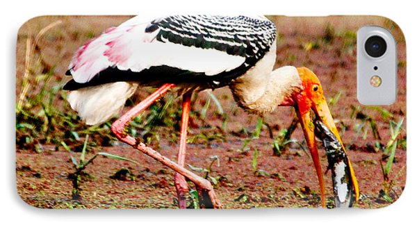 Painted Stork Feeding Phone Case by Pravine Chester