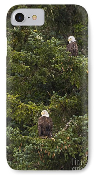 Pair Of Bald Eagles Phone Case by Darcy Michaelchuk