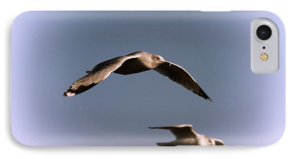 Pair Of Gulls Phone Case by Karol Livote