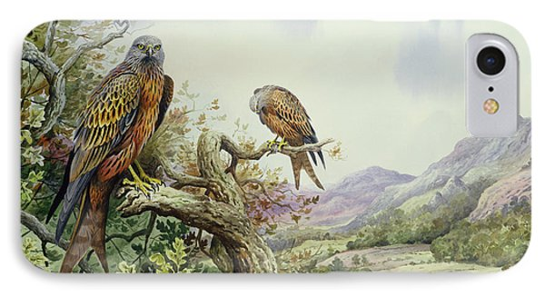 Pair Of Red Kites In An Oak Tree Phone Case by Carl Donner