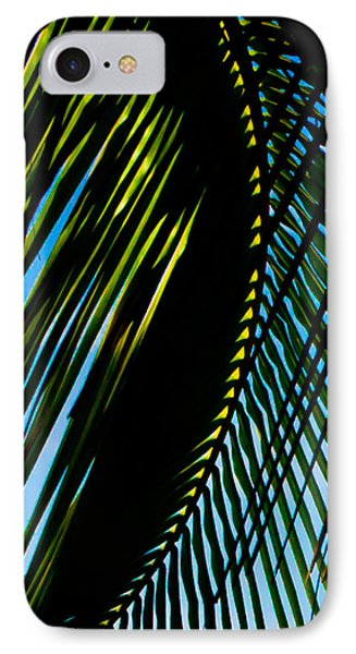 Palm Frond Curve IPhone Case by Anthony Doudt