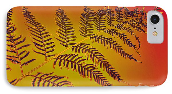 Palm Frond In The Summer Heat Phone Case by Kaye Menner