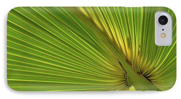 IPhone Case featuring the photograph Palm Leaf II by JD Grimes