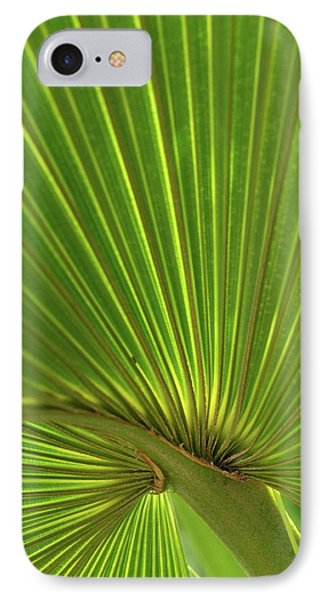 IPhone Case featuring the photograph Palm Leaf by JD Grimes