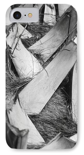 Palm Tree Macro Phone Case by Adam Romanowicz