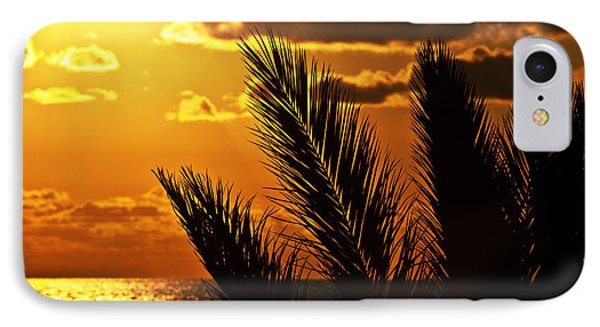 Palm Tree Silhouette At Sunset On The Beach Phone Case by Anna Om