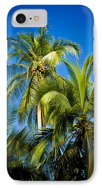 Palm Trees In The Sun IPhone Case by Anthony Doudt