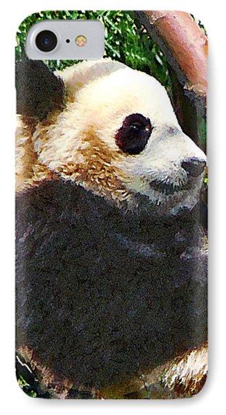 Panda In Tree Phone Case by Susan Savad