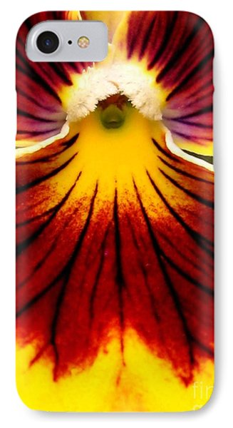 IPhone Case featuring the photograph Pansy Named Imperial Gold Princess by J McCombie