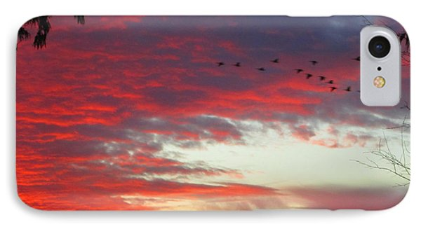 IPhone Case featuring the photograph Papaya Colored Sunset With Geese by Kym Backland
