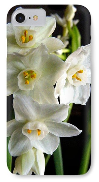 IPhone Case featuring the photograph Paperwhites by Robin Dickinson