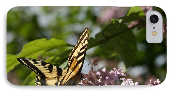 Papilio Glaucus   Eastern Tiger Swallowtail  Phone Case by Sharon Mau